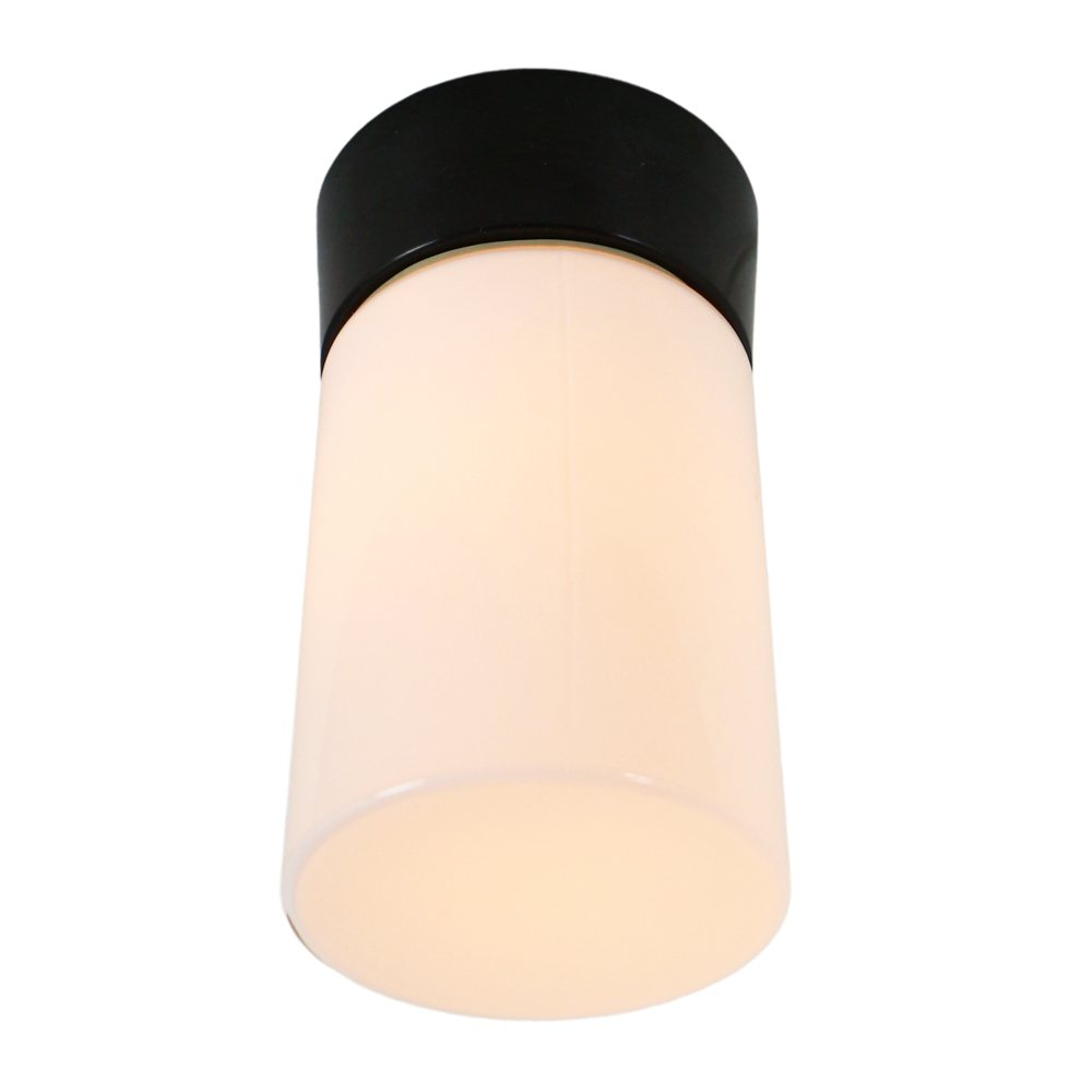 Raak P1413 Opal Glass Flush mount ceiling spot